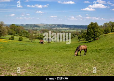 Cotswold landscape, Stow-on-the-Wold, Gloucestershire, England, United Kingdom, Europe - Stock Photo