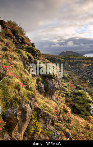 Thingvellir National Park, UNESCO World Heritage Site, Iceland, Polar Regions - Stock Photo