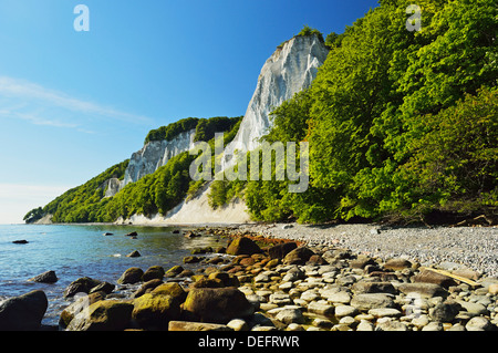 Koenigsstuhl, chalk cliffs, Jasmund National Park, Ruegen Islan (Rugen Island), Mecklenburg-Vorpommern, Germany, - Stock Photo