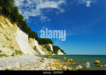 Chalk cliffs, Jasmund National Park, Ruegen Island (Rugen Island), Mecklenburg-Vorpommern, Germany, Baltic Sea, - Stock Photo