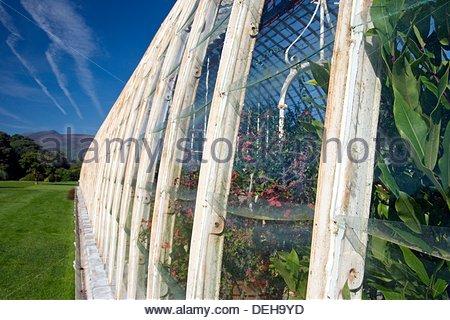 Historic Greenhouse in Muckross House and Gardens, Killarney National Park, County Kerry, Ireland - Stock Photo