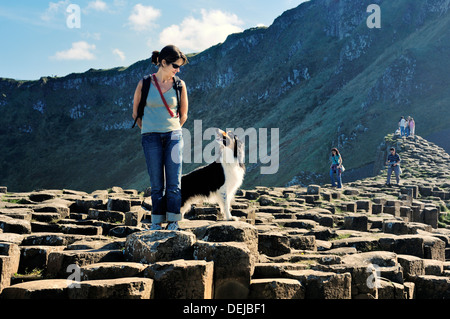 Giant's Causeway, Co. Antrim coast, Northern Ireland, UK. Young woman and border collie on basalt columns of the - Stock Photo