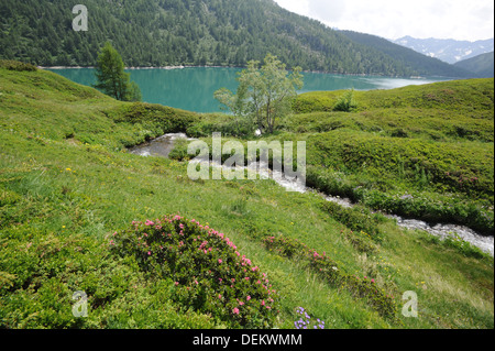 River to lake Ritom on the Swiss alps - Stock Photo
