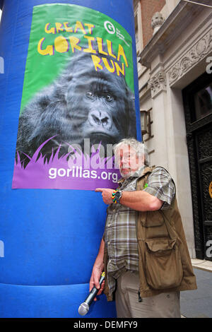 London, UK. 21st September 2013. Bill Oddie starting the Great Gorilla Run 10th anniversary charity fancy dress - Stock Photo