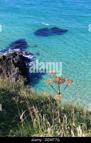 Coastal view near Carrick-a-Rede, rope bridge on the Causeway Coastal Route, Northern Ireland. - Stock Photo