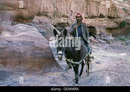 A Jordanian man wearing a red and white checked keffiyeh riding a donkey in Petra Jordan - Stock Photo