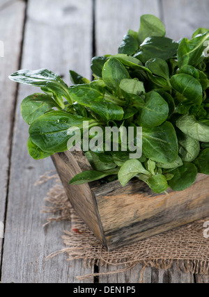 Portion of Lamb's Lettuce on vintage wooden background - Stock Photo