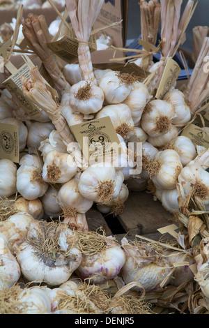 Fresh Isle of Wight garlic at Abergavenny Food Festival 2013 - Stock Photo