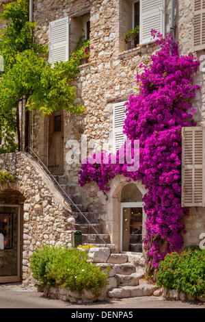 Colorful flowers and staircase lead to home in St. Paul de-Vence, France - Stock Photo