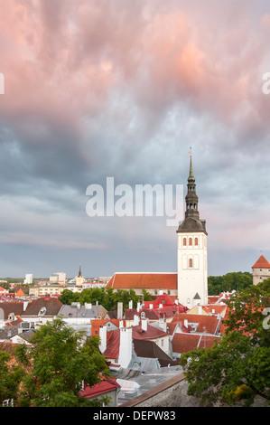 St. Nicholas church in Tallinn, Estonia at sunset - Stock Photo