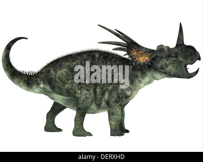 Styracosaurus was a genus of herbivorous ceratopsian dinosaur from the Late Cretaceous Period. - Stock Photo
