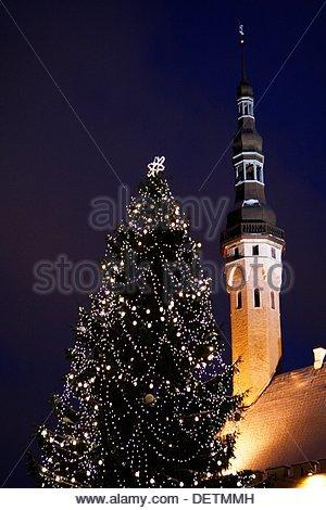 Christmas tree in Raekoja plats infront of Town Hall at Tallin Estonia - Stock Photo