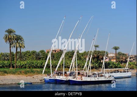 Feluccas moored on banks of River Nile between Aswan and Luxor, Upper Egypt - Stock Photo