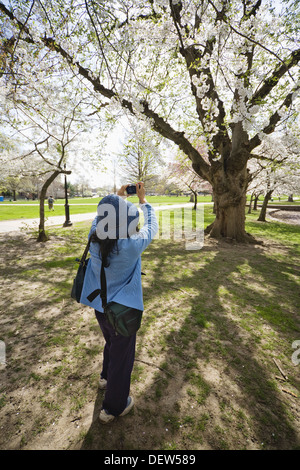 Woman, with two shoulder bags, taking pictures in a city park - Stock Photo