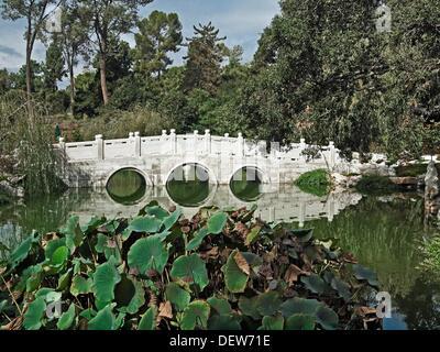 Garden of Flowing Fragrance or Liu Fang Yuan at the Huntington Library and Gardens  San Marino, California - Stock Photo