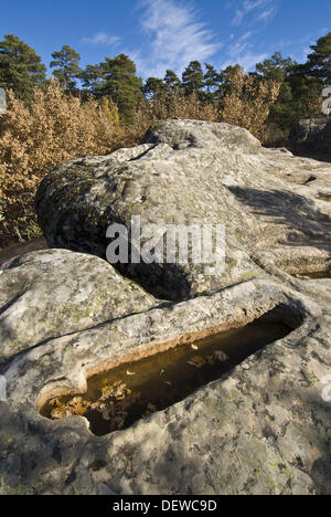 Cuyacabras High Middle Ages necropolis, Quintanar de la Sierra. Burgos province, Castilla-Leon, Spain - Stock Photo