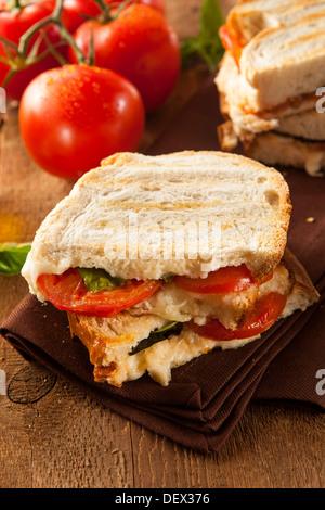 Homemade Tomato and Mozzarella Panini with Basil - Stock Photo