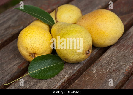 Juicy pear and pear leaves - Stock Photo