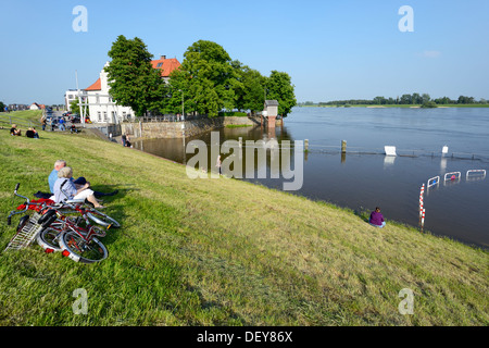 Elbe flood in 2013 in the Zollenspieker ferry boat-house in Kirchwerder, 4 and marshy land, Hamburg, Germany, Europe, - Stock Photo