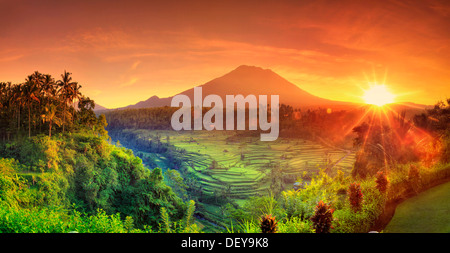 Indonesia, Bali, Redang, View of Rice Terraces and Gunung Agung Volcano - Stock Photo