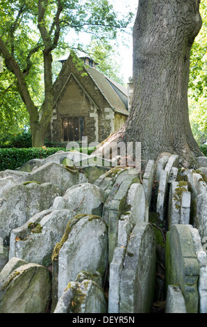 Old St Pancras Church, with The Hardy Tree in the foreground. - Stock Photo