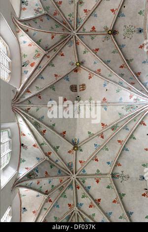 Vaulted ceiling, Church of St. John, Torun, Poland, Europe - Stock Photo