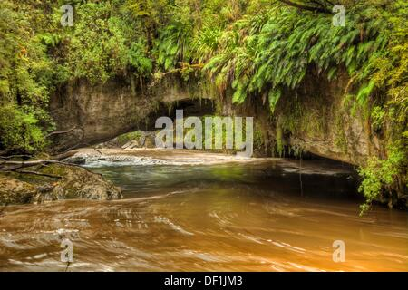 Moria Gate limestone arch with overhanging ferns, Oparara river swollen by rain, Kahurangi National Park, near Karamea, - Stock Photo