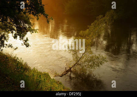 The Bug river in Podlaskie Province, north eastern Poland. - Stock Photo