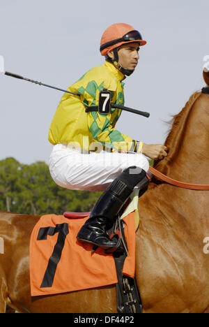 Jockey thoroughbred horse racing at Tampa Bay Downs in Tampa. Florida. USA - Stock Photo