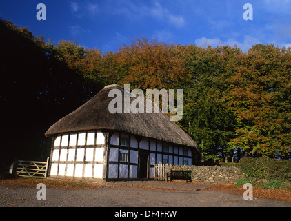 Abernodwydd Farmhouse in autumn National History Museum St Fagans Cardiff South Wales UK - Stock Photo