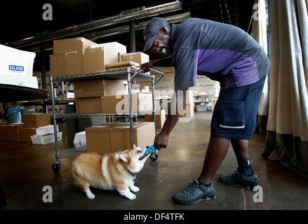 Sept. 18, 2013 - Memphis, Tenn, U.S. - September 18, 2013 - FedEx delivery driver Robert Johnson (right) plays with - Stock Photo