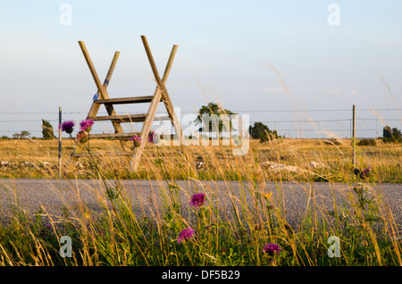Stile over barb wire with flowers in foreground - Stock Photo