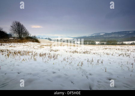 Amberley snow on the field in West Sussex, UK - Stock Photo