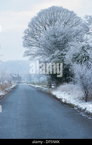 Looking along quiet deserted straight country lane lined with white trees & walls, on bitter, cold, frosty winter's - Stock Photo