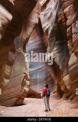 Hiker in Buckskin Gulch Paria Canyon-Vermilion Cliffs Wilderness Arizona - Stock Photo