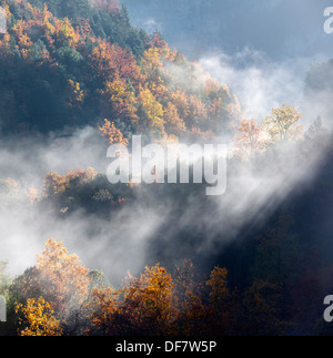 Autumnal forest in the valley of Anisclo, Ordesa National Park, Pyrenees, Huesca, Aragon, Spain - Stock Photo