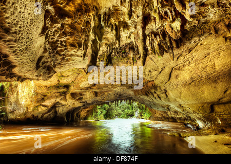 Moria Gate arch with limestone stalagtites on roof, swollen Oparara river, near Karamea, Kahurangi National Park, - Stock Photo