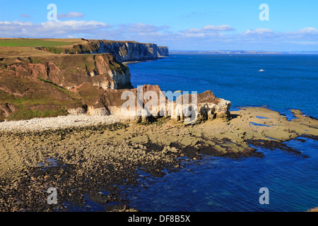 Thornwick Bay and distant Bempton Cliffs, Flamborough Head, East Yorkshire, England, UK. - Stock Photo