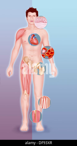 CELL THERAPY, ILLUSTRATION - Stock Photo