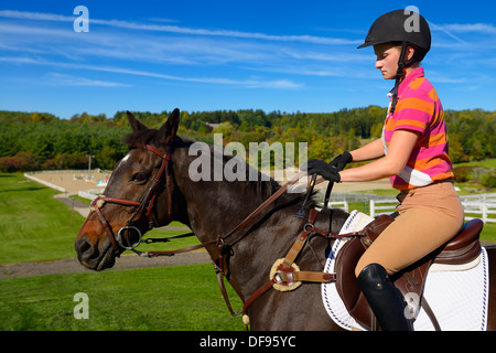 Young female rider mounted on a bay thoroughbred gelding horse going to outdoor training ring Ontario Canada - Stock Photo