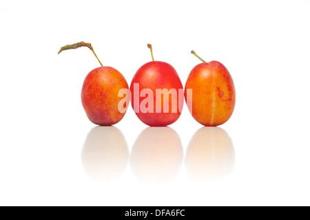 Whole and half plums on a white background. - Stock Photo
