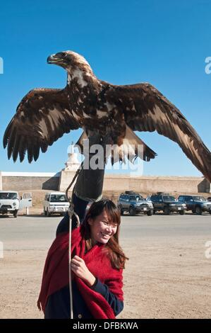 tourist hoisting a golden eagle in the Orkhon Valley of Mongolia - Stock Photo