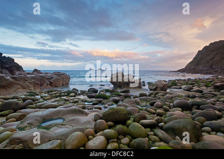 Porth Nanven in Cots Valley, Cornwall, England. Taken at first light on a summers day in late July. - Stock Photo