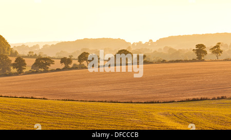 Looking across fields on the South Downs in Hampshire - Stock Photo