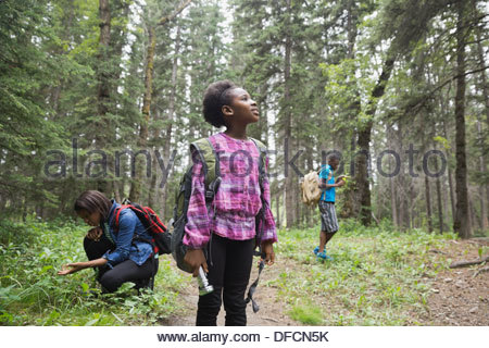 Siblings exploring in forest - Stock Photo