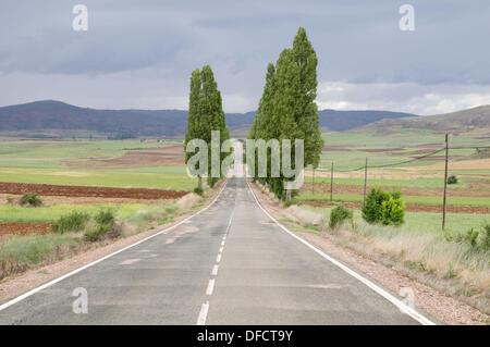 Side road. Guadalajara province, Castilla La Mancha, Spain. - Stock Photo
