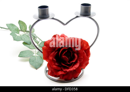 Rose with candle holders - Stock Photo