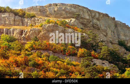 Autumn Forest on rocky Mountain hill colorful seasonal Landscape Saving Nature ecology concept - Stock Photo