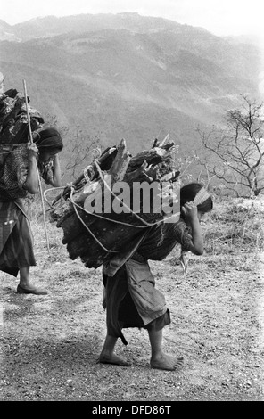 Pan American Highway, indigenous native Indians carry huge packs of wood walking along the side of the PAH. 1973 - Stock Photo