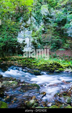 Small river Curak, long exposure tripod shot, ´Zeleni vir´ protected park near Skrad in Croatia - Stock Photo